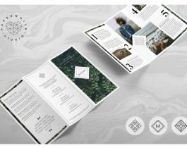 Tải Mẫu Thiết Kế Brochure Đẹp