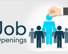 Tuyển dụng nhân viên Thiết kế Đồ họa - Công ty Cổ phần Hàng Liên Kết
