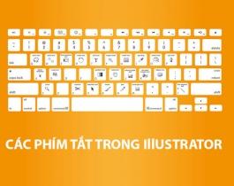 Tổng hợp các phím tắt trong Abode Illustrator giúp làm việc nhanh hơn