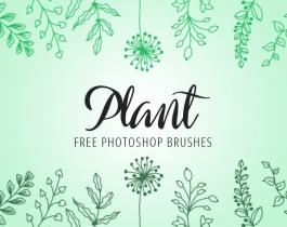 Tổng hợp Brush thiên nhiên, thực vật (cây, cỏ, lá, mưa, thác, sấm sét, núi ...)